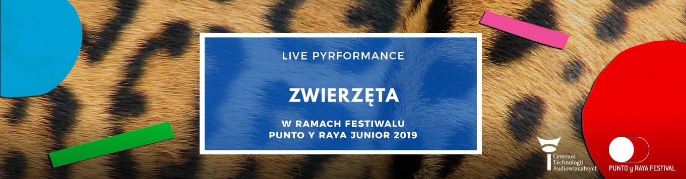 Zwierzęta - live pyrformance